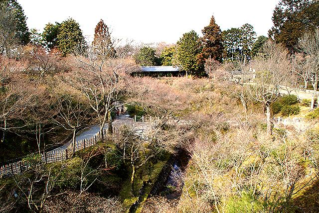 tofukuji_river2.jpg