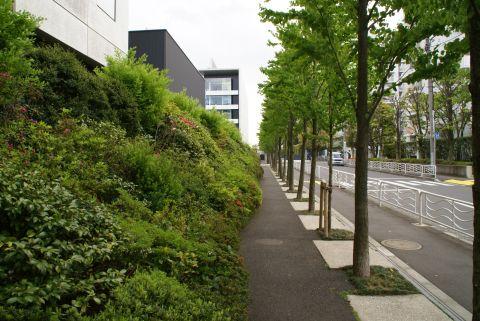 toyocho_takenaka_green2.jpg