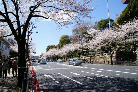 yasukuni_st.jpg