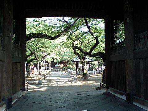 yutenji.jpg