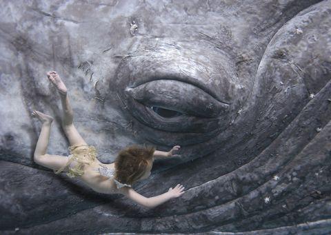 zholloway_whale_s.jpg