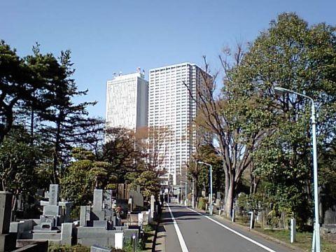 zoshigaya_sunshine.jpg