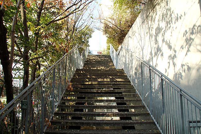 acrosfukuoka_stepgarden_start.jpg