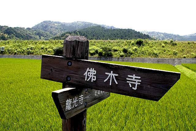 butsumokuji_board.jpg