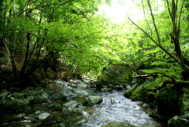 geopark_sougawa_river.jpg