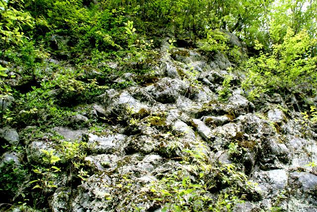 geopark_volcanostone2.jpg
