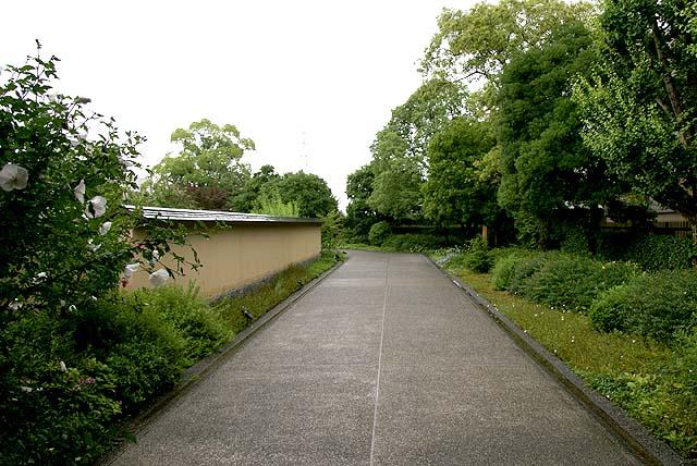 ikuchijima_hirayamaikuomuseum_path.jpg