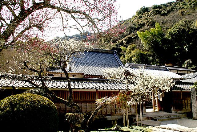 iwakuni_tosenji_s.jpg