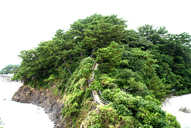 katsurahama_greenhill.jpg