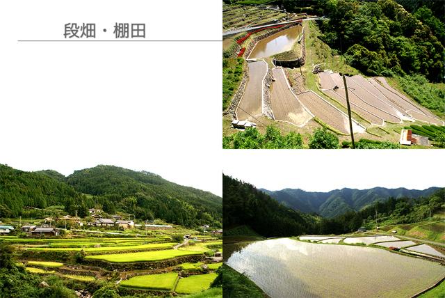nagata_presen06.jpg