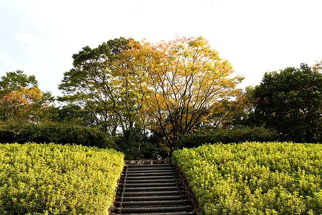 nanrakuen_yellow.jpg