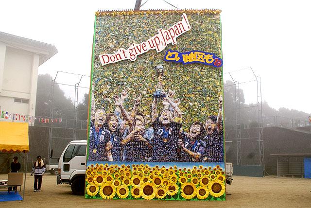 olympic_panel_doi1.jpg