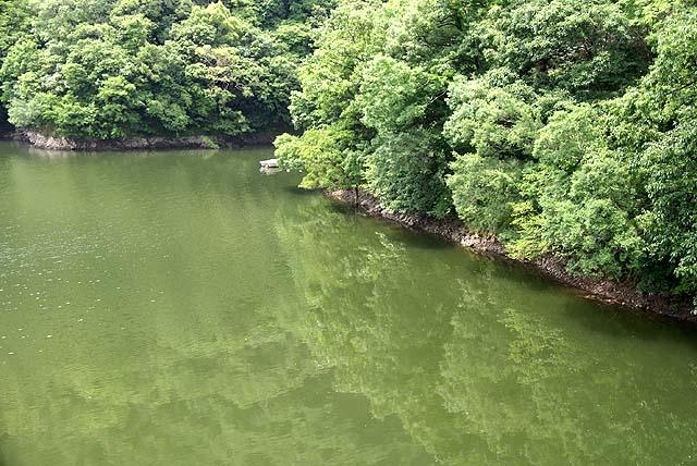 sakaishi_rivermirror.jpg
