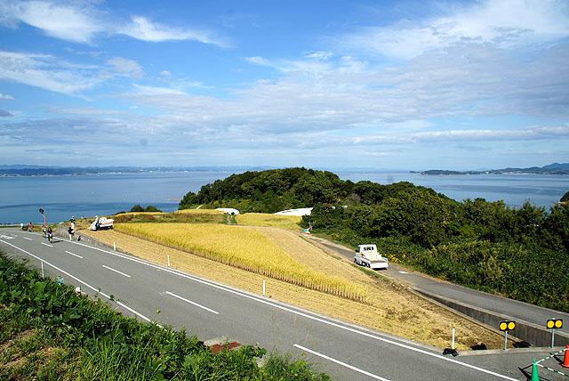 teshima_trianglefield.jpg