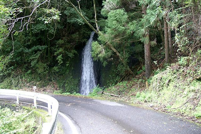 yanase_roadsidefall.jpg