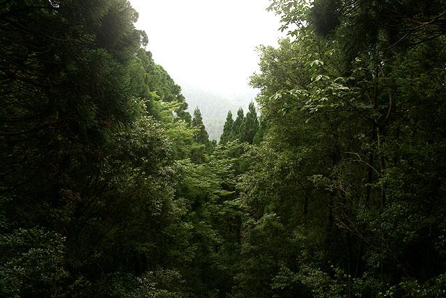 yanase_senbonyama_observatory_view.jpg
