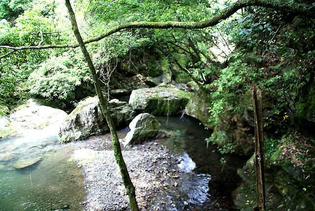 yusukawa_onbandaki_pond.jpg