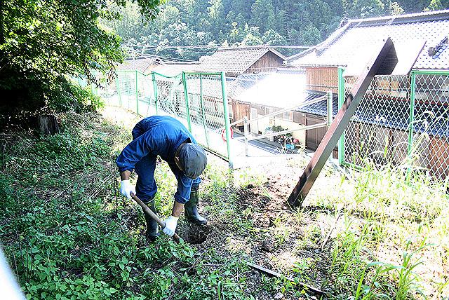 yusukawaboard_oicho_dig.jpg