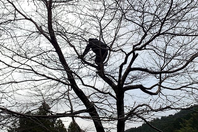 yusukawajuku_kohazaparkcleaning2.jpg